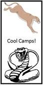 Cobra - cougar