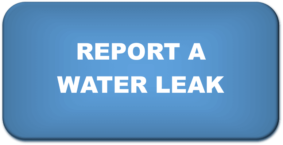 Report_Water_Leak