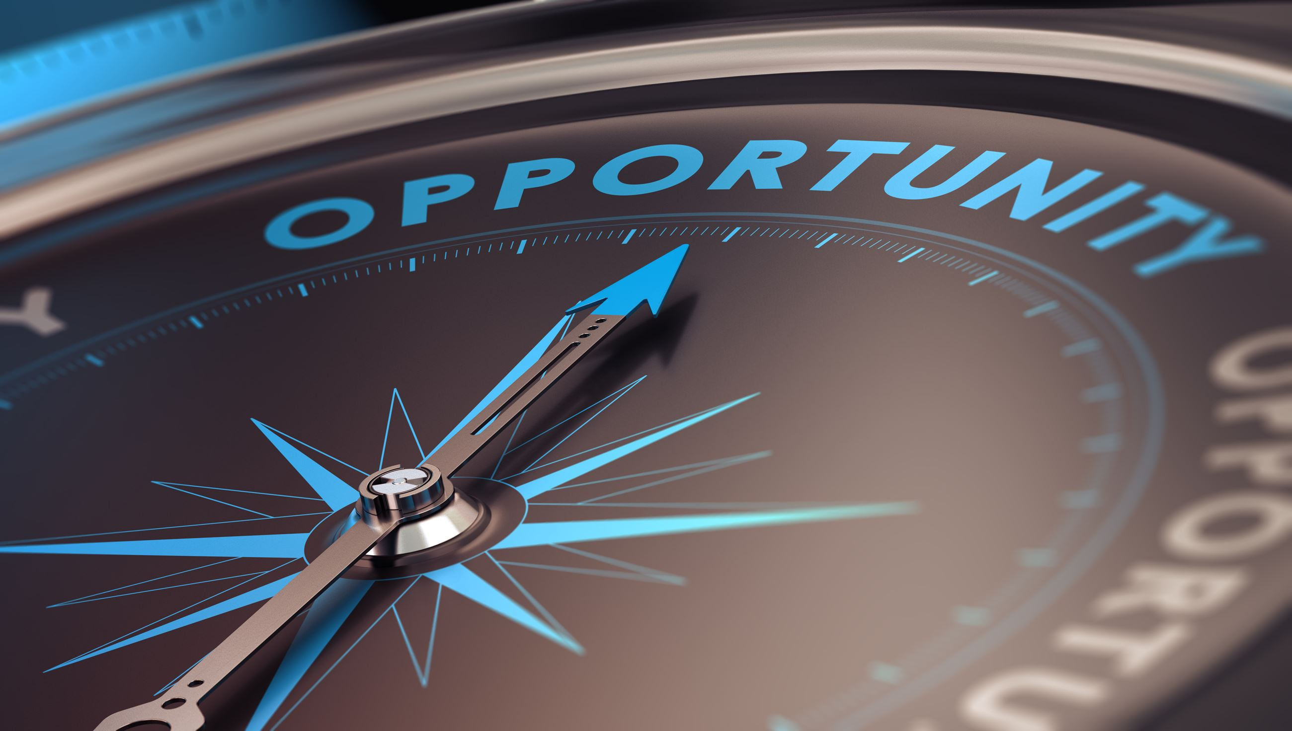 Image of a compass with the arm pointing to the word opportunity Opens in new window